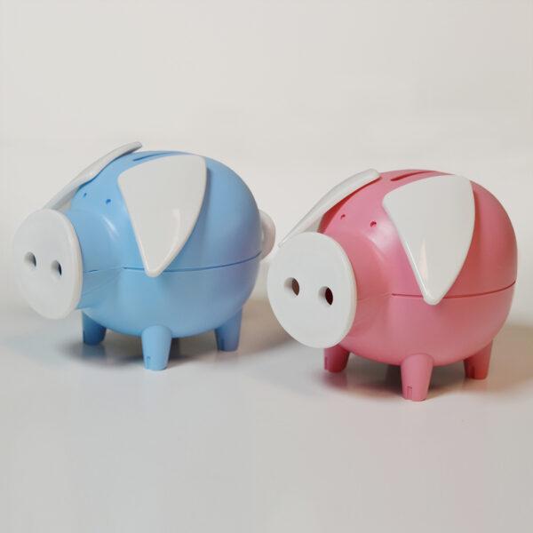 Piggy piggybank package